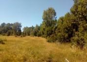 Se vende canpo de 27 hectares ubicado en ruta 5 sur camino a par puerto montt