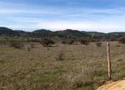 Parcelas desde pichilemu orilla de carretera pichilemu