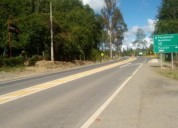 Campo de 13 5 hectareas orilla carretera hacia panguipulli lanco