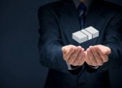 ¿necesita un inversor privado extranjero?