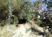 terreno 1.6 hectáreas, valle del elqui
