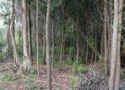 Sitios rodeados de naturaleza