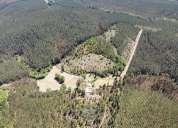 Se vende parcela cordillerana de 5 hectareas.