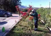Jardineria san bernardo
