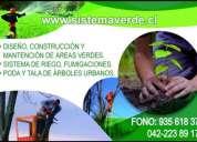 Servicios de poda y tala de arboles chillan