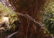 Terreno en el mágico cochiguaz, 2 casas, 1.000 m2.