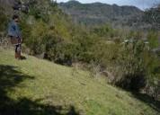Vendo terreno hueinahue