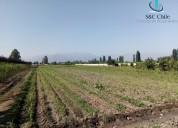 Terreno uso mixto en paine 30.450 m2
