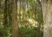 Fundo colliguay 641 hectáreas