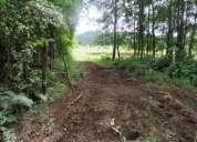 Terreno sector cudico bajo villarrica lican ray 5000 m2