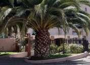 Talasia jardin del mar 3 dormitorios 180 m2