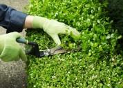 Ofrezco servicio de jardineria en sector norte pu