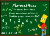 Profesor clases de matematica concepción