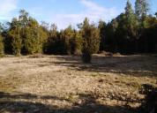 Vende derechos de parcela 5000 mts² senda central