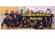 Online - karate y fitness