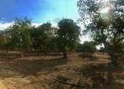 Quillota pueblo de indios parcela 5 000 m2