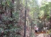 Hermoso terreno vilches centro septima region en san clemente