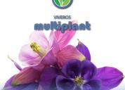 Multiplant