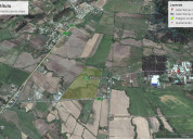 Quinamavida 15 has. a 1 km de las termas de quinam