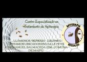 Apiterapia tratamiento con abejas