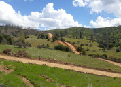 Terreno de 20 hectáreas en el sauzal