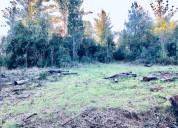 Campo 10 hectáreas