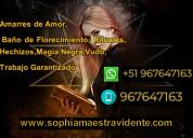 Sophia, maestra del amor